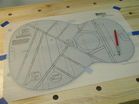 Back Brace Layout